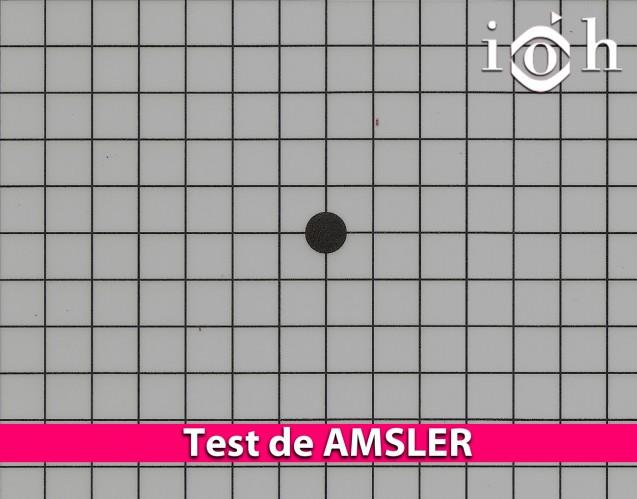 Test de AMSLER